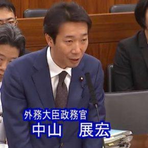 参議院政府開発援助(ODA)特別委員会にて報告